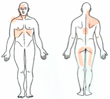 liver referred pain points